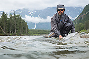 Kimsquit Peak wears rain clouds and lingering winter snow as Pat Bogdan releases a tidewater chinook back to BC's Dean River.