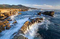 Point Lobos State Park CA, USA.