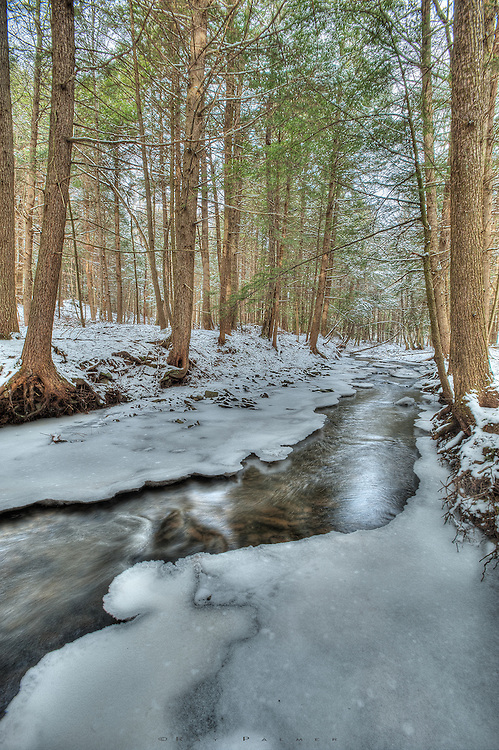 Bull Creek is one of many little drainages that feed Gilboa Reservoir in Schoharie County. On this cold Decemeber day I was reminded that the woods are not the best place for a photographer when it's still hunting season, as a shot rang out not too far away, prompting my retreat to the car before I was mistaken for venison.