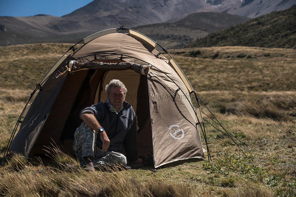 Tent<br /> Chimborazo Forest Reserve<br /> Chimborazo Province<br /> Andes<br /> ECUADOR, South America