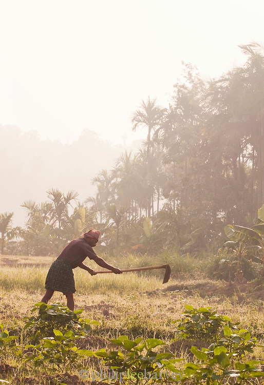A farmer working land in Wayanad, Kerala, India