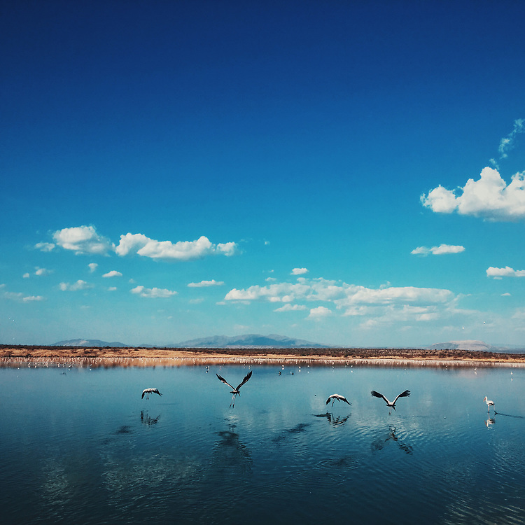 Processed with VSCO with c8 preset
