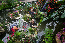 © Licensed to London News Pictures. 06/02/2020. London, UK.Florist and Kew volunteer HENCK ROLING (L), Kew apprentice JENNY CRABB (C) and diploma student NEIL ALDERSON (R) apply final touches to Orchids during press preview of the 25th Kew Orchid Festival at Kew Royal Botanical Gardens. This year's theme is around the wonders of Indonesia and the festival runs from 8 February to 8 March 2020. Photo credit: Dinendra Haria/LNP