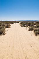 Sandy desert road South of San Felipe, Baja California, Mexico