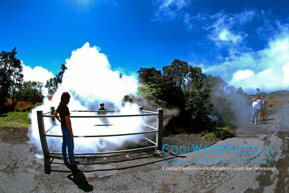 Steam Vents, off Crater Rim Drive, Hawaii, USA Volcanoes National Park, Kilauea, Big Island, Hawaii, USA