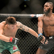 Ricky Simon (green trunks) defeated Montel Jackson (black trunks) in a bantamweight bout at UFC 227 held at the Staples Center in Los Angeles on August 4, 2018. Photo by Todd Bigelow for ESPN.