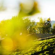 Clayton Shank dirt jumps at the Valmont Bike Park in Boulder, CO.