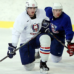 20071212: Ice Hockey - Practice of Slo Team with new coach Matts Waltin