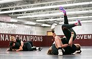 Women's Wrestling, Augsburg University
