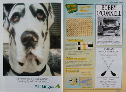 All Ireland Senior Hurling Championship - Final,.01.09.1996, 09.01.1996, 1st September 1996,.01091996AISHCF, .Wexford v Limerick,.Wexford 1-13, Limerick 0-14,.Aer Lingus, Bobby O'Connell, Curran Indoor Hurley, .Bobby O'Connell, Ballybrown House, Clarina, Co Limerick,