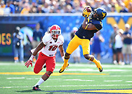 MORGANTOWN, WV - SEPTEMBER 10:  Daikiel Shorts #6 of the West Virginia Mountaineers makes a catch in front of Jermiah Braswell #16 of the Youngstown State Penguins during the second quarter at Mountaineer Field on September 10, 2016 in Morgantown, West Virginia. (Photo by Joe Sargent/Getty Images)