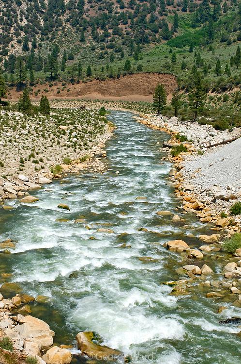 West Walker River, Mono County, California