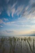"""Long exposure of night over sea and shoreline of gulf of Riga, nature park """"Engure"""", Latvia Ⓒ Davis Ulands   davisulands.com"""