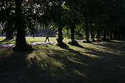 A morning walker taking daily exercise strides between ash trees in London's Ruskin Park. As an early sun shines through the summer foliage, the ladt walks at a brisk pace, with a stride long enough to exercise her leg muscles. Ruskin Park is a large and well-used Edwardian-style urban park between Camberwell, Brixton and Herne Hill. The park is named after John Ruskin, the famous artist, writer and social campaigner, who lived nearby from 1823 to 1871.