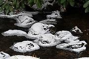 Ice-ringed stones in the stream echo the raked sand of the nearby karesansui garden at the Asticou Azalea Garden, Northeast Harbor, Maine