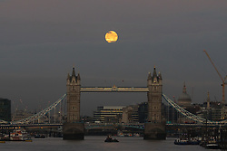 © Licensed to London News Pictures. 04/11/2017. London, UK. The December supermoon is seen shortly before sunrise behind Tower Bridge on the River Thames this morning before disappearing behind clouds. Photo credit: Vickie Flores/LNP