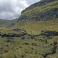 """PERUVIAN ARCHAEOLOGY.  Horse pack train on ancient Inca Trail passes through """"halca"""" grasslands above Unamen village in Peru's Cordillera Central, in upper Amazon headwaters. (Andes Mountains)"""