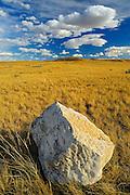 Bison rubbing stone on Canadian prairie grasslands  (West Block) <br /> Grasslands National Park<br /> Saskatchewan<br /> Canada