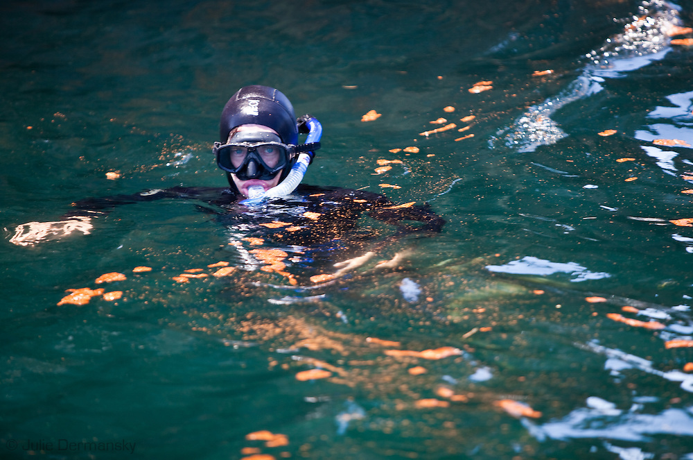 Frank Pope,  in diving gear before snorkeling in the Gulf of Mexico in water mixed with oil and dispersants