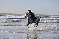 horse riding Lyme Regis  beach  Dorset photo by David Court
