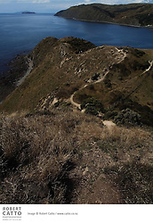 The New Zealand Walkway track at Makara Beach in Wellington leads to a historic WWII gun emplacement, looking out over Cook Strait towards the South Island...The high cliffs and spectacular views that are features of Makara have for centuries provided the people of the area with good vantage points for the defence of their land. Makara Walkway is a 6 km loop, climbing to vantage points with spectacular views, and returning along the beach...A Ngati Ira pa site lies on the promontory at the western end of Fisherman's Bay, and gun emplacements at the top of the cliffs mark the position of Fort Opau, which was garrisoned by 100 soldiers during World War II.