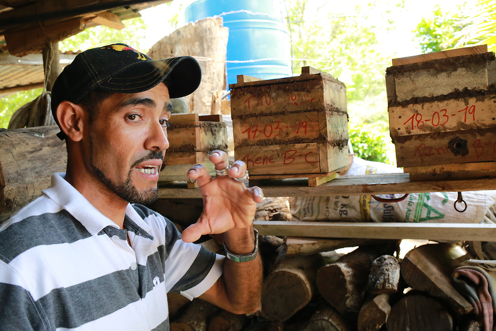 René Bermúdez has been taught by the CIEETS program supported by CWS to farm Melipona bees, a stingless bee that produces medicinal honey.