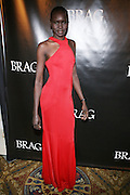 Alek Wek at The BRAG 38th Annual Scholarship & Awards Dinner Dance held at Cipraini- Wall Street on October 17, 2008 in New York City ..BRAG?s Annual Scholarship and Awards Dinner Gala highlights the achievements of distinguished leaders in retail and related industries who believe and support the BRAG vision.  It also provides financial scholarships to deserving students who exhibit financial need.  BRAG, through this event, offers its members networking opportunities, introduces its members to CEOs and other senior corporate executives, and supports professional development. The Gala also serves as the organization's key fundraising event for its scholarship, mentoring, and training program