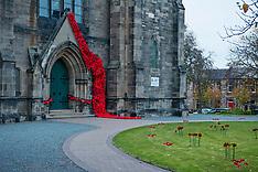 Remembrance Poppies,  Edinburgh, 2 November 2018