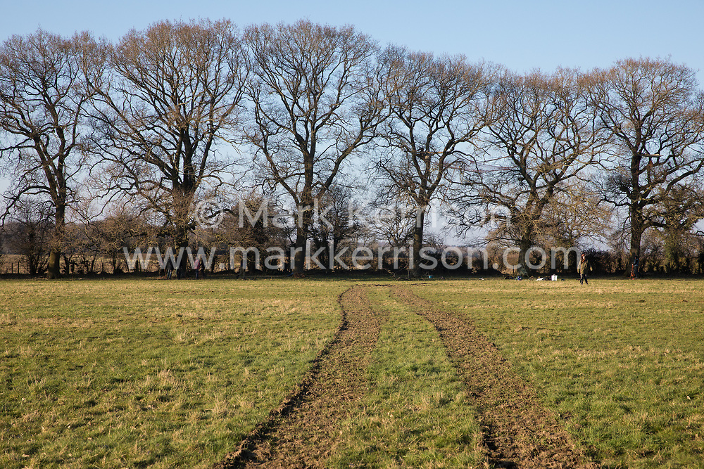 Great Missenden, UK. 28th February, 2021. A row of oak trees along Leather Lane is pictured from across farmland. Environmental activists from HS2 Rebellion have recently occupied the trees and set up a camp nearby following local reports that around twelve of the oak trees are threatened with felling for temporary works associated with the HS2 high-speed rail link. The tracks were made by an HS2 vehicle.