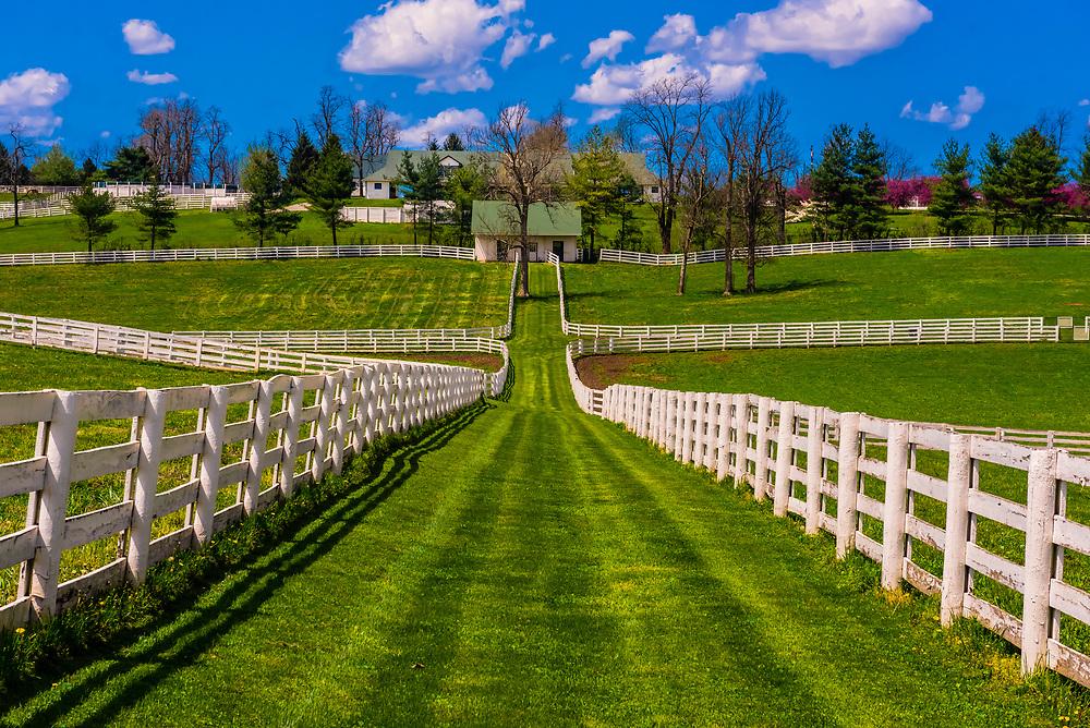 Darby Dan Farm (thoroughbred horse farm), Lexington, Kentucky USA.