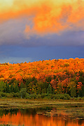 Storm light at sunset and forest in autumn color<br /> Oxtongue Lake<br /> Ontario<br /> Canada