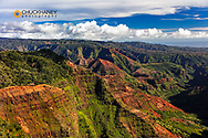 Waimea Canyon State Park in Kauai, Hawaii, USA
