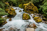 See the crashing whitewater of Marian Stream from the Viewing Gantry along Lake Marian Track, Hollyford Road, in Fiordland National Park, Southland region, South Island of New Zealand. In 1990, UNESCO honored Te Wahipounamu - South West New Zealand as a World Heritage Area.