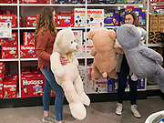"""28 NOVEMBER 2019 - ANKENY, IOWA: Shoppers at the Target store in Ankeny, Iowa, look at 3 foot Teddy Bears. The Teddy Bears were one of the store's """"door buster"""" items. """"Black Friday"""" is the unofficial start of the Christmas holiday shopping season and has traditionally thought to be one of the busiest shopping days of the year. Brick and mortar retailers, like Target, are facing increased pressure from online retailers this year. Many retailers have started opening on Thanksgiving Day. Target stores across the country opened at 5PM on Thanksgiving to attract shoppers with early """"Black Friday"""" specials.     PHOTO BY JACK KURTZ"""