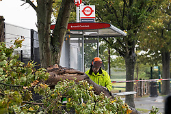 © Licensed to London News Pictures. 02/10/2020. London, UK.  Workmen remove a tree which has fallen in high winds next to a bus stop in Hayes, West London, as Storm Alex brings 90mph winds and heavy rain to large parts of the UK. Photo credit: Ben Cawthra/LNP