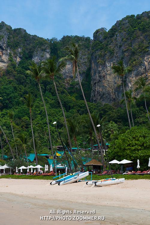 Palm trees on Centara Grand beach near Ao Nang, Krabi province, Thailand