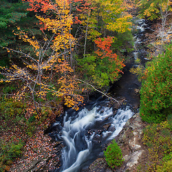 Duck Brook in fall in Maine's Acadia National Park.