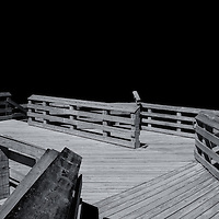 """""""Negative Space Two""""<br /> <br /> Beautiful black and white abstract of negative space, lines, and angles!"""