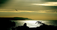 morning light over freshwater bay, isle of wight