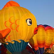 A goldfish-shaped balloon launches at the annual Albuquerque Balloon Fiesta