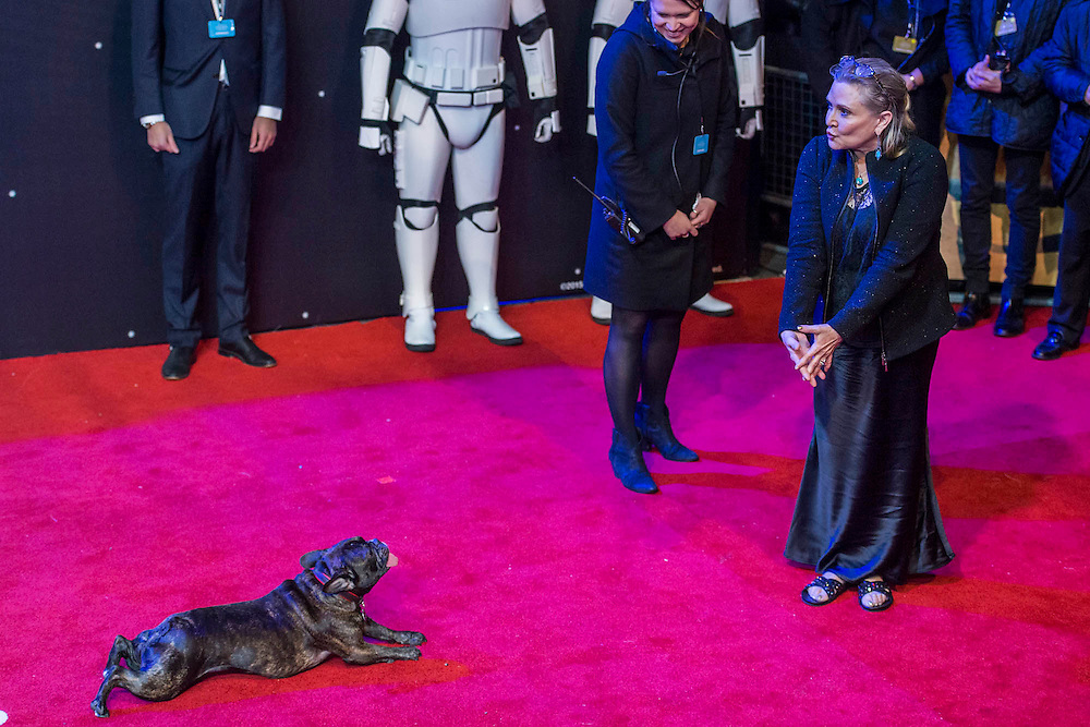 Carrie Fisher brings her dog - The European Premiere of STAR WARS: THE FORCE AWAKENS - Odeon, Empire and Vue Cinemas, Leicester Square, London.