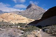scenic path leading through a rocky landscape