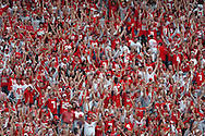 Ohio State fans cheer on the Buckeyes before the kickoff of the 2006 season yesterday in Columbus.