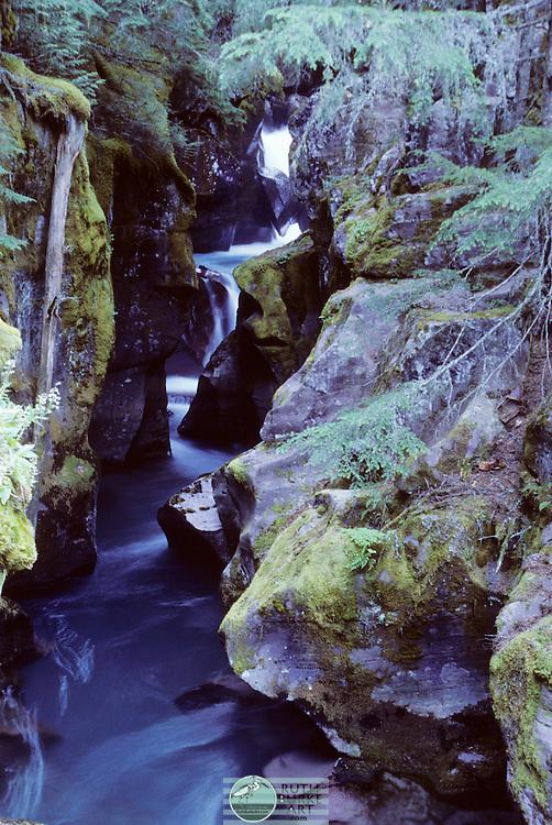 Glacier National Park, Park,