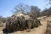 Straw Thatched huts in a Hadza Tribe village, Lake Eyasi, Tanzania