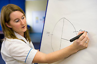 nurse using a pie chart to teach food groups in a healthy eating class