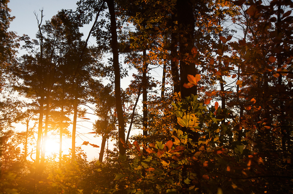 The sun breaks through the morning on the rim of the Linville Gorge in North Carolina