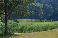 ENSCHEDE -  Zuid 3. Golfbaan Rijk van Sybrook - COPYRIGHT KOEN SUYK