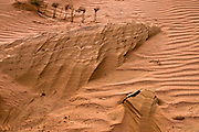 Desert sand dune Photographed in Israel Negev Desert