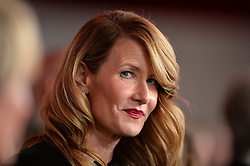 Laura Dern attends the premiere of Paramount Pictures' 'Downsizing' at Regency Village Theatre on December 18, 2017 in Los Angeles, California. Photo by Lionel Hahn/ABACAPRESS.COM
